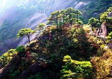 huang shan 4 - Гора Хуаншань