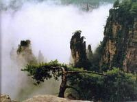 wulingyuan-6