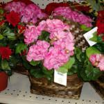 Искусственные цветы из Китая оптом с доставкой