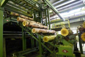 Белоярский лесопромышленный комплекс
