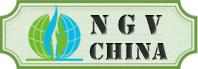 NGV China 2017