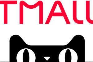 Открытие магазина на Tmall и его продвижение